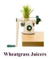 shop-wheatgrass